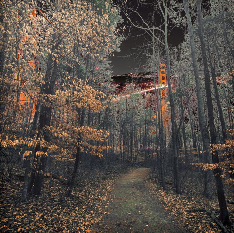 Fantasy Land-the path of wonder